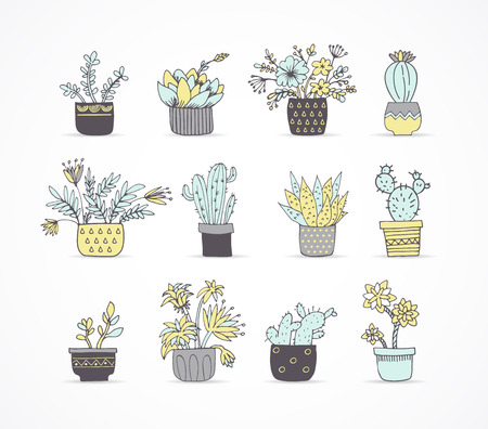 cactus cartoon: Cute hand drawn cactus and succulent set