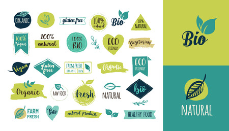 Bio, Ecology, Organic logos and icons, labels, tags. Hand drawn bio healthy food badges, set of raw, vegan, healthy food signs, organic and elements set Reklamní fotografie - 66190163