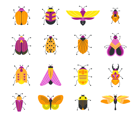 Bugs, insects, Butterfly, ladybug, beetle, swallowtail, dragonfly collection. Illustration