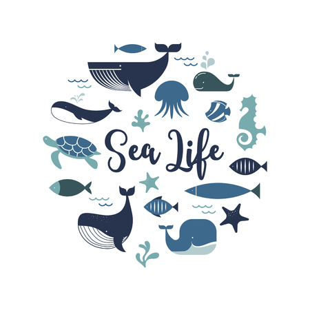 Sea life, whales, dolphins illustrations, banner and poster design