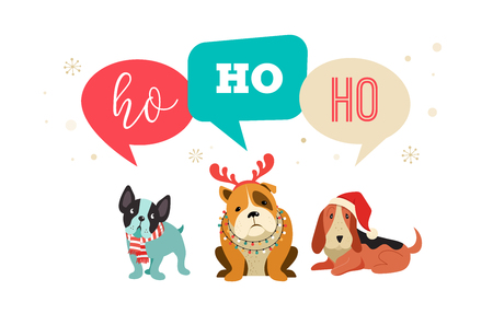 Collection of Christmas dogs, Merry Christmas illustrations of cute pets with accessories like a knited hats, sweaters, scarfs, vector graphic elements Ilustracja