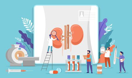 Research scientists. Science laboratory, chemistry scientists and clinical lab. Medical research items, clinical science laboratories experiments. Kidney inspection - concept vector illustration