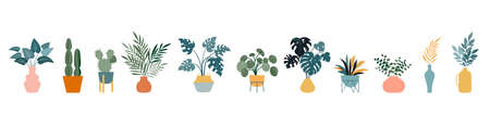 Urban jungle, trendy home decor with plants, cacti, tropical leaves in stylish planters and pots. Vector illustration Vector Illustratie