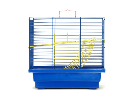 cage isolated on the white background photo