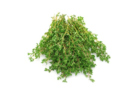 thyme on white isolated background photo