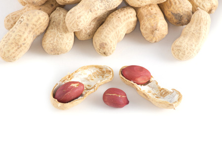 monkey nut: Peanuts on a white background