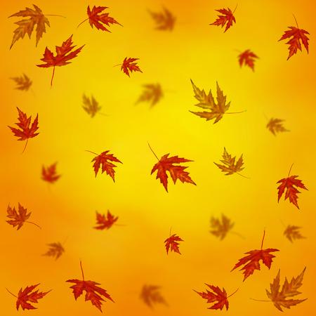 autumn motif: Autumn background