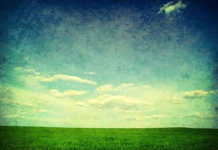 clear sky: Green field, blue sky and sun