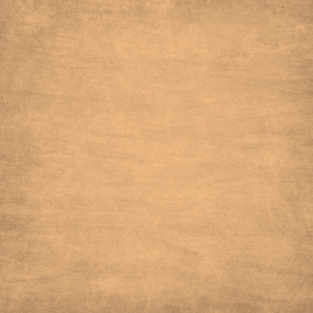 parchment paper: retro background with texture of old paper