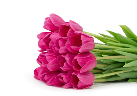 loveliness: Bouquet from tulips flowers isolated on white