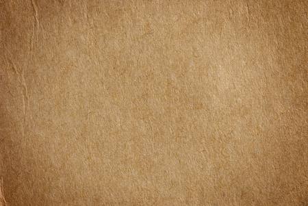 torn paper edge: Cardboard blank background empty to insert text or design