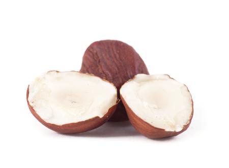 hazel nut: Hazel nut isolated on white background Stock Photo