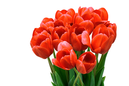 Bouquet from tulips flowers isolated on white