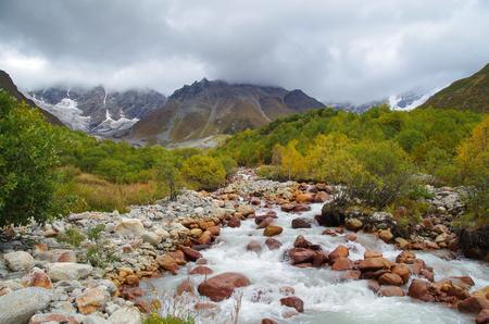 Autumn colors. Beautiful multi-colored forest and Shkhara glacier. Nature and travel. Georgia, Svaneti region, Mestia, Ushguli