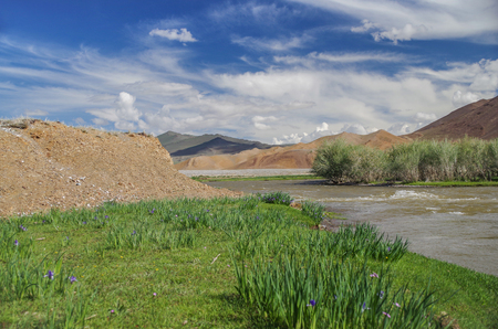 Mongolian Altai. Beautiful mountain of irises and raging mountain river. High water. Spring run-off. Nature and travel. Mongolia, Bayan-Olgii Province