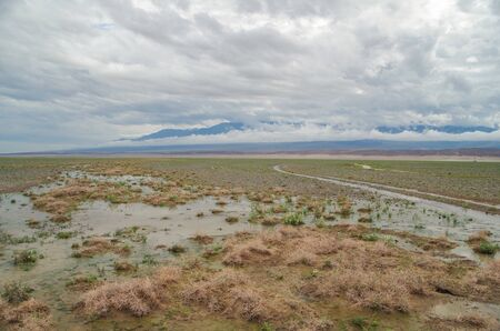 Mongolian steppe after rain. Nature and travel. Mongolia, Khovd Province