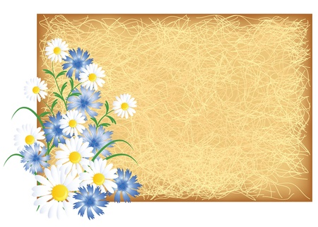 scratch card: Grunge background with chamomiles and cornflowers Illustration