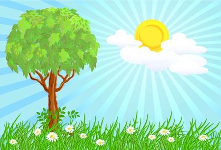 Tree on a sunny meadow Stock Vector - 9380452