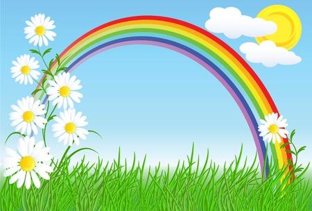 Camomiles, rainbow en blauwe hemel