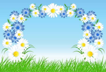 Cornflowers, camomiles with green grass and blue sky Stock Vector - 9380453