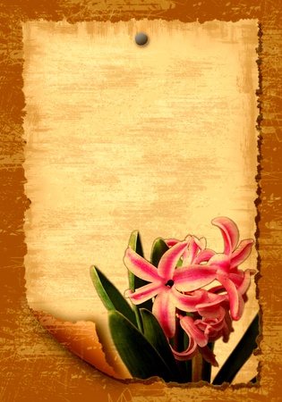 Old paper blank leaf with flowers photo