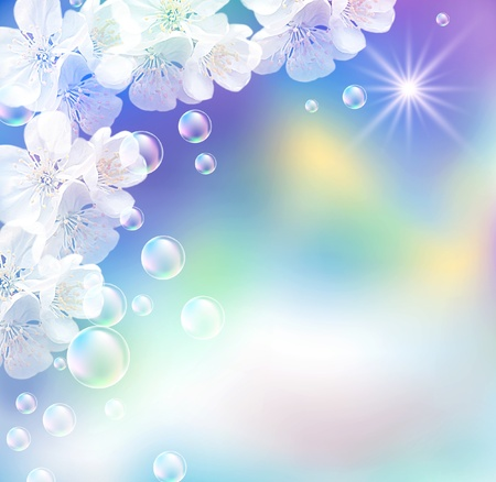 Sky, white flowers, bubbles  and  sunshine  photo