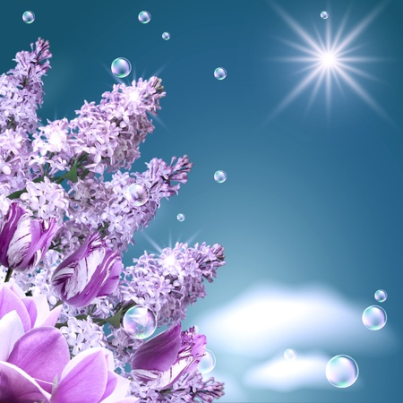 Lilac, tulip, magnolia, bubbles  and sun photo