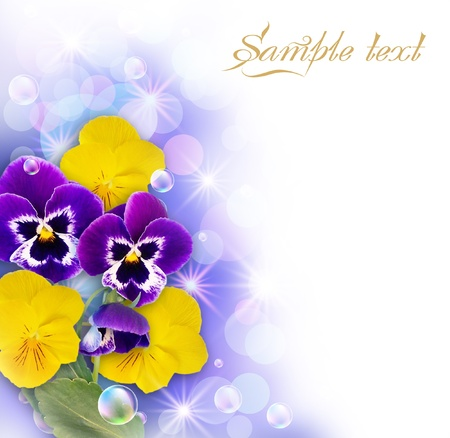 White frame with pansy, bubbles and stars Stock Photo - 9657722