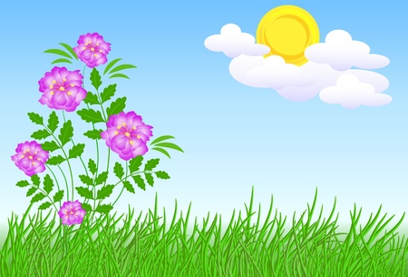 Meadow flowers and sun Stock Vector - 9657865