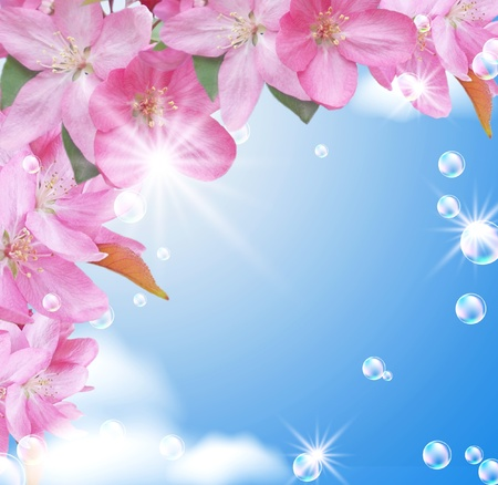 Card with peach blossom, bubbles and stars photo