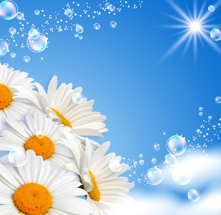 Daisies and bubbles against the sky