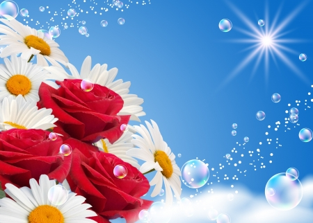 Margaritas y rosas contra el cielo
