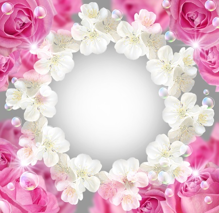 Card with roses, white flowers and bubbles   Stock Photo - 9809923