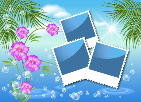 Design photo frames with sea landscape with palm, flowers and bubbles   Illustration