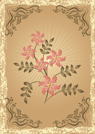 Card in retro style with meadow flower Vector