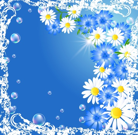 Background with camomiles, cornflowers and bubbles in grunge frame Vector
