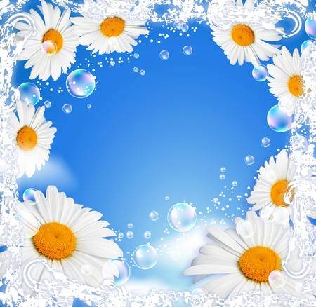 Flowers and in a white open-work frame Stock Photo - 9859410