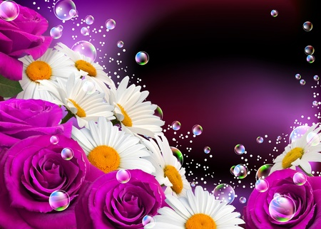 Daisies, roses and bubbles Stock Photo - 9859469