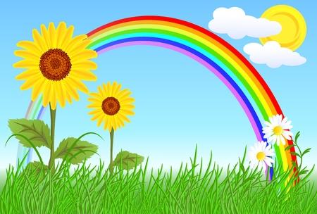 ヒマワリ、カモミール、虹と青い空