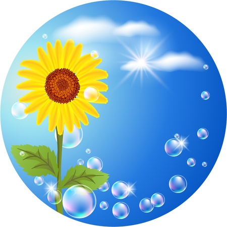 Round background with sunflower, clouds and bubbles Vector