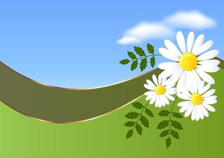 golden daisy: Fondo abstracto con daisy y nubes