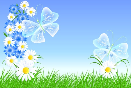 Cornflowers, camomiles and butterflies Vector