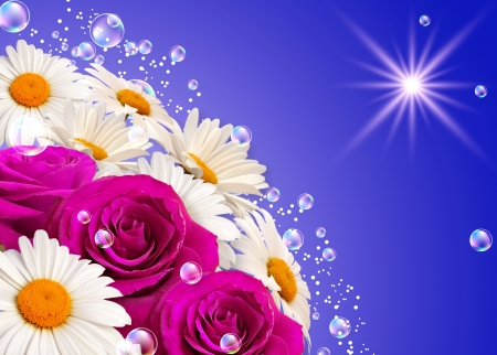 blue roses: Daisies, rainbow and bubbles against the sky