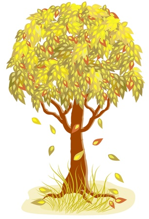 autumn leafs: Autumn tree with falling leaves Illustration