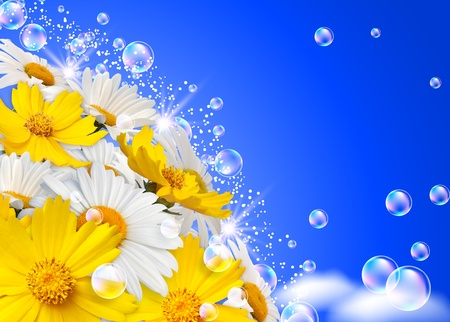 Daisies and bubbles photo