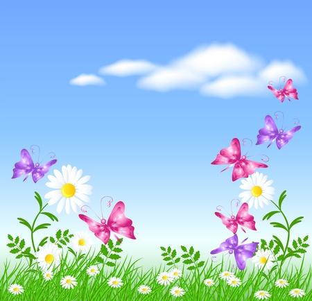 Camomiles auf dem grünen Gras und Schmetterlinge