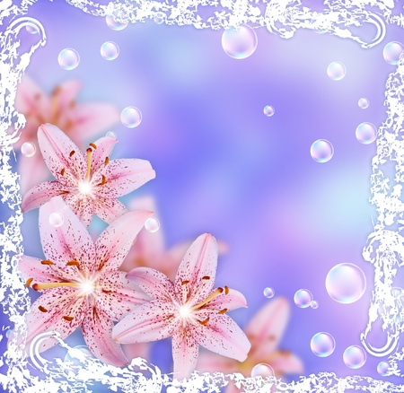 Card with lily, bubbles and stars photo