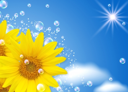 Sunflower and bubbles against the sky photo