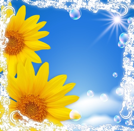Sky, sunflowers, clouds, bubbles  and  sunshine  photo