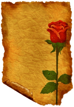 Old paper with rose - crumple parchment paper texture background photo